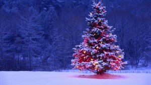 Decorated-Christmas-Tree-640x360